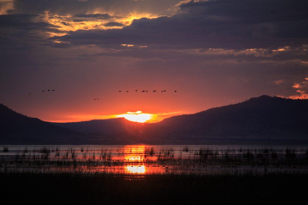 Goose Lake, SOnnenuntergang