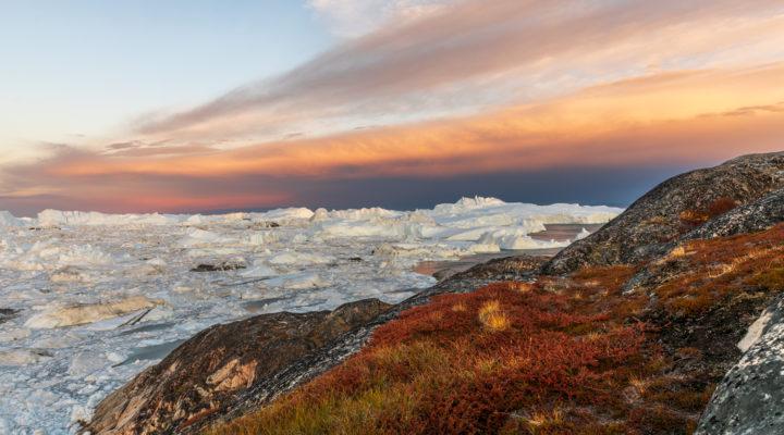 Grönland Ilulissat, Foto: Sylvia Knittel