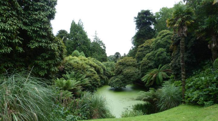 Foto: Julia Hagemeister Lost Gardens of Heligan